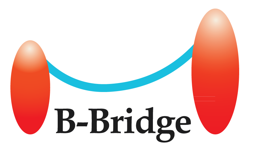 B-Bridge International Inc.