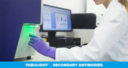 Thumbnail Preview of FabuLight™ - Label Primary Antibodies in Solution