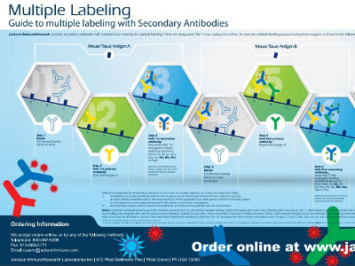 Multiple Labeling Poster
