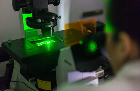 Scientist using a fluorescent microscope