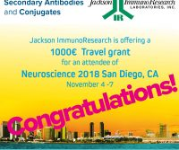 Travel Grant Winner