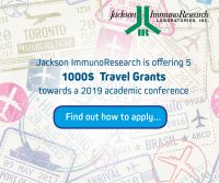 JIR Travel Grant 2019